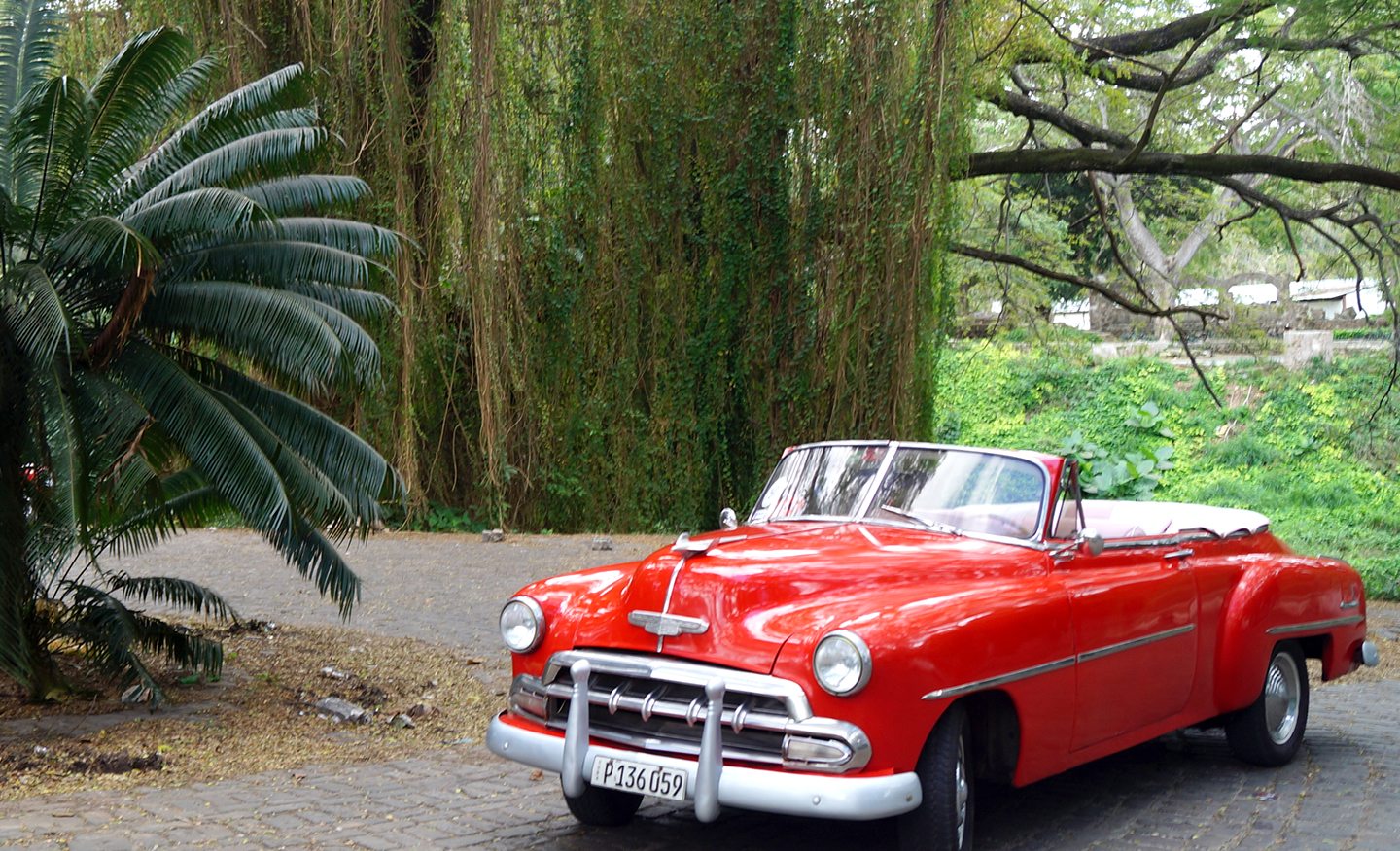 cuba old car with travel agency